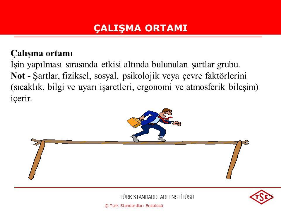 © Türk Standardları Enstitüsü TÜRK STANDARDLARI ENSTİTÜSÜ15 ÇALIŞMA ORTAMI Çalışma ortamı İşin yapılması sırasında etkisi altında bulunulan şartlar gr