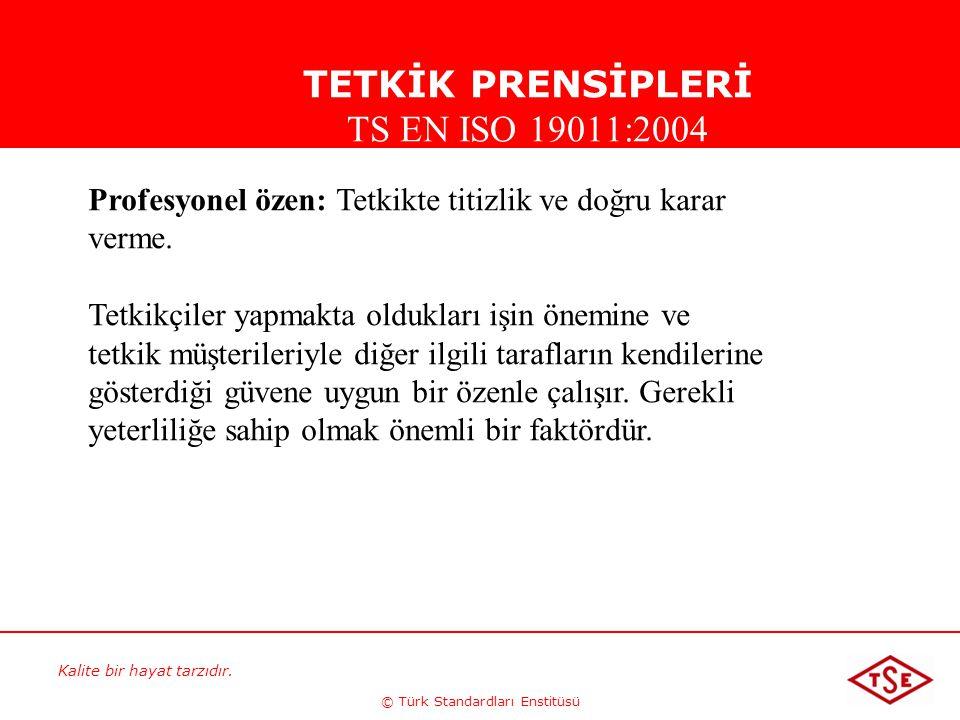 Kalite bir hayat tarzıdır. © Türk Standardları Enstitüsü Profesyonel özen: Tetkikte titizlik ve doğru karar verme. Tetkikçiler yapmakta oldukları işin