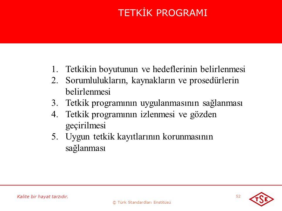 Kalite bir hayat tarzıdır. © Türk Standardları Enstitüsü 52 TETKİK PROGRAMI 1.Tetkikin boyutunun ve hedeflerinin belirlenmesi 2.Sorumlulukların, kayna