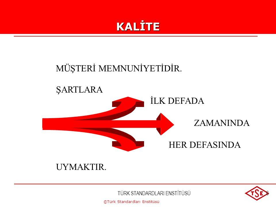 ©Türk Standardları Enstitüsü TÜRK STANDARDLARI ENSTİTÜSÜ6 ŞARTLARA İLK DEFADA ZAMANINDA HER DEFASINDA UYMAKTIR. MÜŞTERİ MEMNUNİYETİDİR.KALİTE