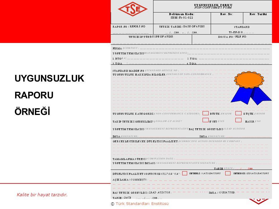 Kalite bir hayat tarzıdır. © Türk Standardları Enstitüsü 79 UYGUNSUZLUK RAPORU ÖRNEĞİ