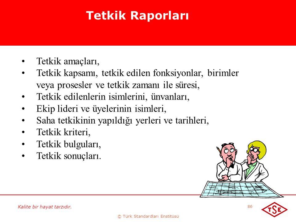 Kalite bir hayat tarzıdır. © Türk Standardları Enstitüsü 86 Tetkik Raporları Tetkik amaçları, Tetkik kapsamı, tetkik edilen fonksiyonlar, birimler vey