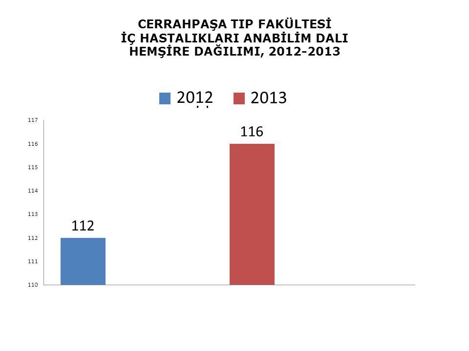 2013 CERRAHPAŞA TIP FAKÜLTESİ İÇ HASTALIKLARI ANABİLİM DALI HEMŞİRE DAĞILIMI, 2012-2013