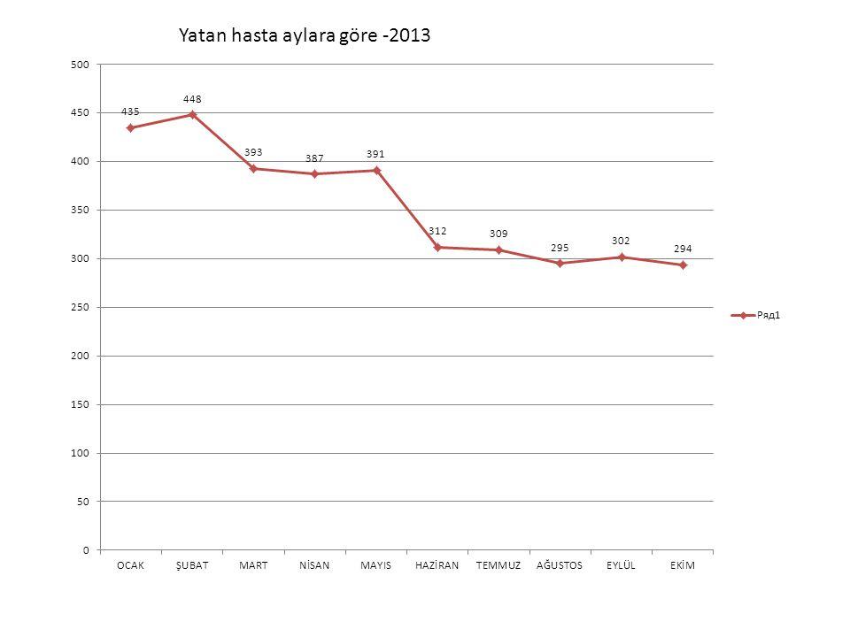 Yatan hasta aylara göre -2013