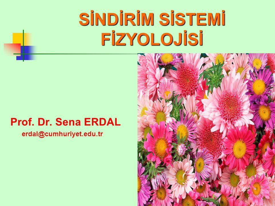 SİNDİRİM SİSTEMİ FİZYOLOJİSİ Prof. Dr. Sena ERDAL erdal@cumhuriyet.edu.tr