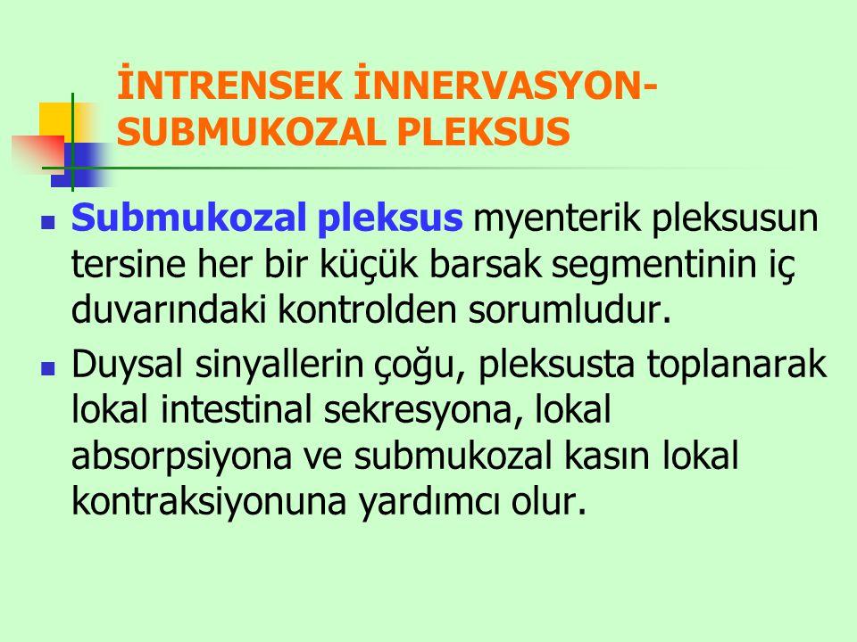 İNTRENSEK İNNERVASYON- SUBMUKOZAL PLEKSUS Submukozal pleksus myenterik pleksusun tersine her bir küçük barsak segmentinin iç duvarındaki kontrolden sorumludur.
