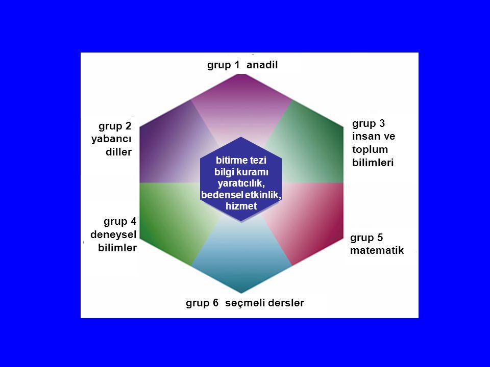 grup 1 anadil grup 2 yabancı diller grup 3 insan ve toplum bilimleri grup 4 deneysel bilimler grup 6 seçmeli dersler grup 5 matematik bitirme tezi bil