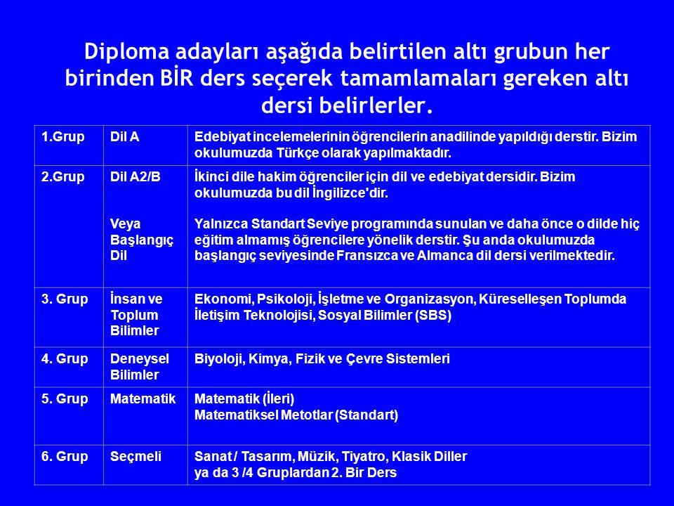 Diploma adayları aşağıda belirtilen altı grubun her birinden BİR ders seçerek tamamlamaları gereken altı dersi belirlerler. 1.GrupDil AEdebiyat incele