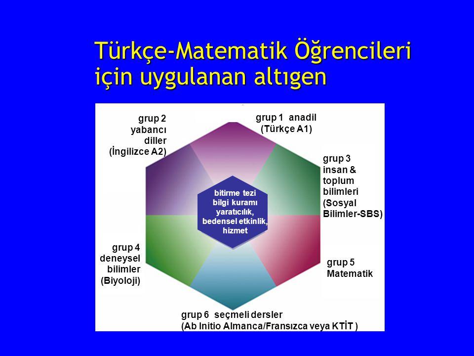 Türkçe-Matematik Öğrencileri için uygulanan altıgen bitirme tezi bilgi kuramı yaratıcılık, bedensel etkinlik, hizmet grup 2 yabancı diller (İngilizce