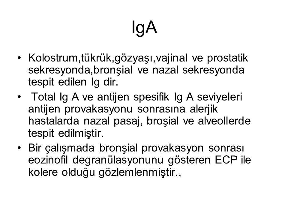 IgA Kolostrum,tükrük,gözyaşı,vajinal ve prostatik sekresyonda,bronşial ve nazal sekresyonda tespit edilen Ig dir. Total Ig A ve antijen spesifik Ig A