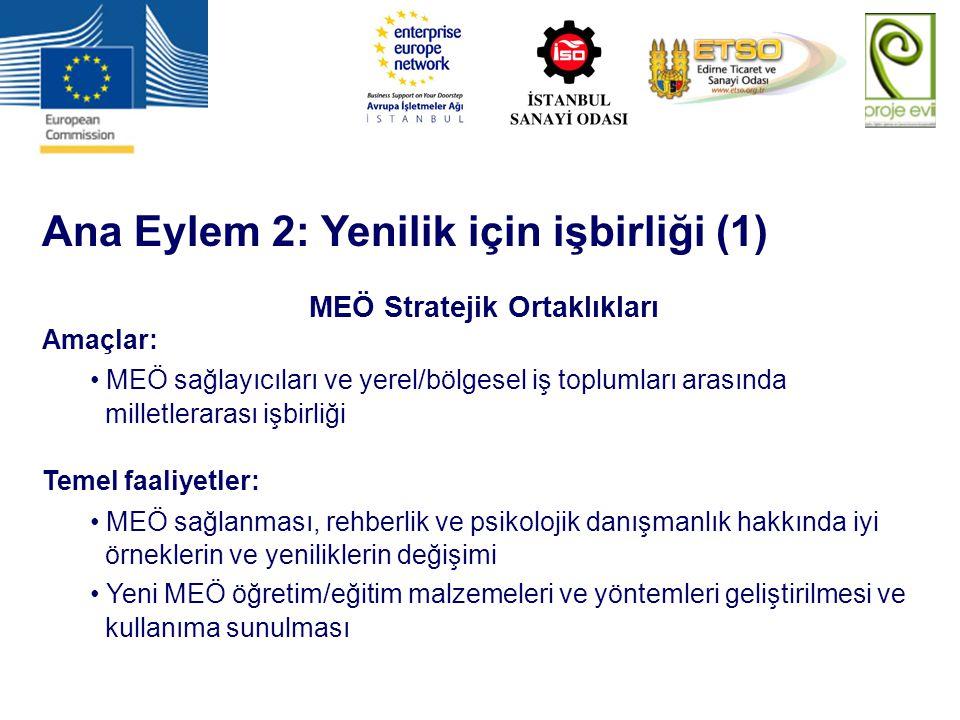 Ana Eylem 2: Yenilik için işbirliği (1) MEÖ Stratejik Ortaklıkları Amaçlar: MEÖ sağlayıcıları ve yerel/bölgesel iş toplumları arasında milletlerarası