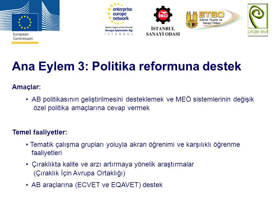 Ana Eylem 3: Politika reformuna destek Amaçlar: AB politikasının geliştirilmesini desteklemek ve MEÖ sistemlerinin değişik özel politika amaçlarına ce