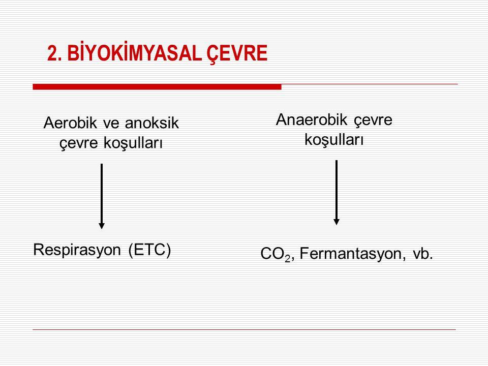 Aerobik ve anoksik çevre koşulları Anaerobik çevre koşulları Respirasyon (ETC) CO 2, Fermantasyon, vb. 2. BİYOKİMYASAL ÇEVRE