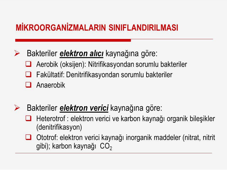 MİKROORGANİZMALARIN SINIFLANDIRILMASI  Bakteriler elektron alıcı kaynağına göre:  Aerobik (oksijen): Nitrifikasyondan sorumlu bakteriler  Fakültati