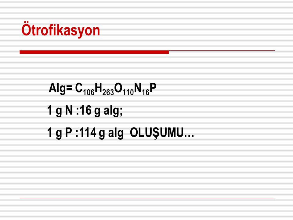 Alg= C 106 H 263 O 110 N 16 P 1 g N :16 g alg; 1 g P :114 g alg OLUŞUMU… Ötrofikasyon