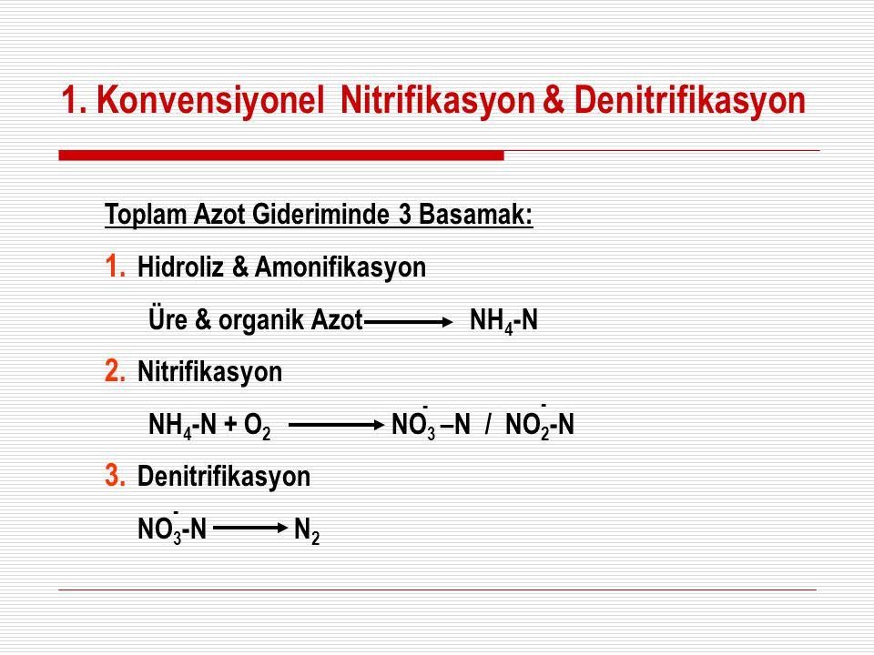 1. Konvensiyonel Nitrifikasyon & Denitrifikasyon Toplam Azot Gideriminde 3 Basamak: 1. Hidroliz & Amonifikasyon Üre & organik Azot NH 4 -N 2. Nitrifik
