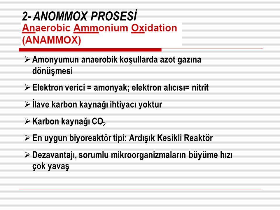 2- ANOMMOX PROSESİ  Amonyumun anaerobik koşullarda azot gazına dönüşmesi  Elektron verici = amonyak; elektron alıcısı= nitrit  İlave karbon kaynağı