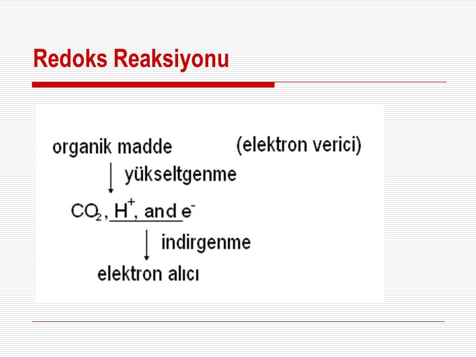 2- ANOMMOX PROSESİ  Amonyumun anaerobik koşullarda azot gazına dönüşmesi  Elektron verici = amonyak; elektron alıcısı= nitrit  İlave karbon kaynağı ihtiyacı yoktur  Karbon kaynağı CO 2  En uygun biyoreaktör tipi: Ardışık Kesikli Reaktör  Dezavantajı, sorumlu mikroorganizmaların büyüme hızı çok yavaş