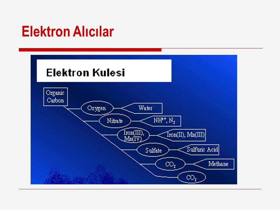 Elektron Taşıma Zinciri