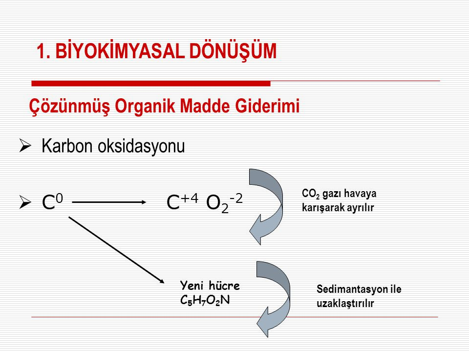  Karbon oksidasyonu  C 0 C +4 O 2 -2 Yeni hücre C 5 H 7 O 2 N CO 2 gazı havaya karışarak ayrılır Sedimantasyon ile uzaklaştırılır Çözünmüş Organik M