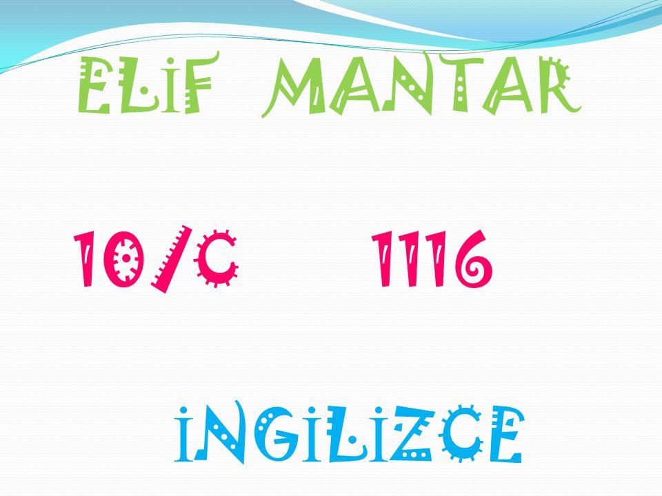 EL İ F MANTAR 10/C 1116 İ NG İ L İ ZCE