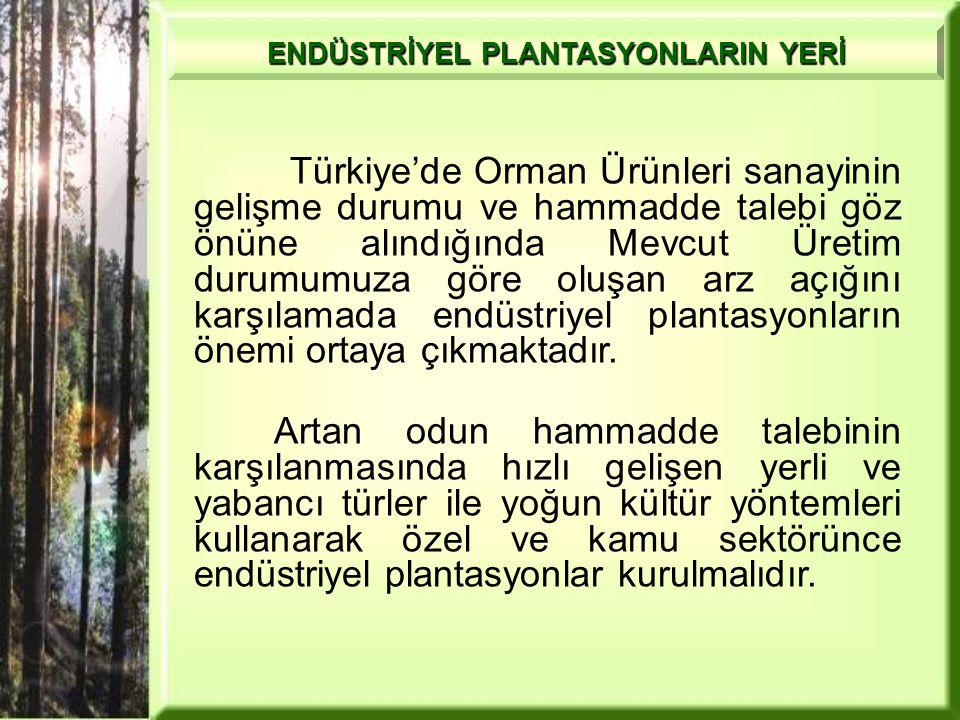 Türkiye'de Orman Ürünleri sanayinin gelişme durumu ve hammadde talebi göz önüne alındığında Mevcut Üretim durumumuza göre oluşan arz açığını karşılamada endüstriyel plantasyonların önemi ortaya çıkmaktadır.