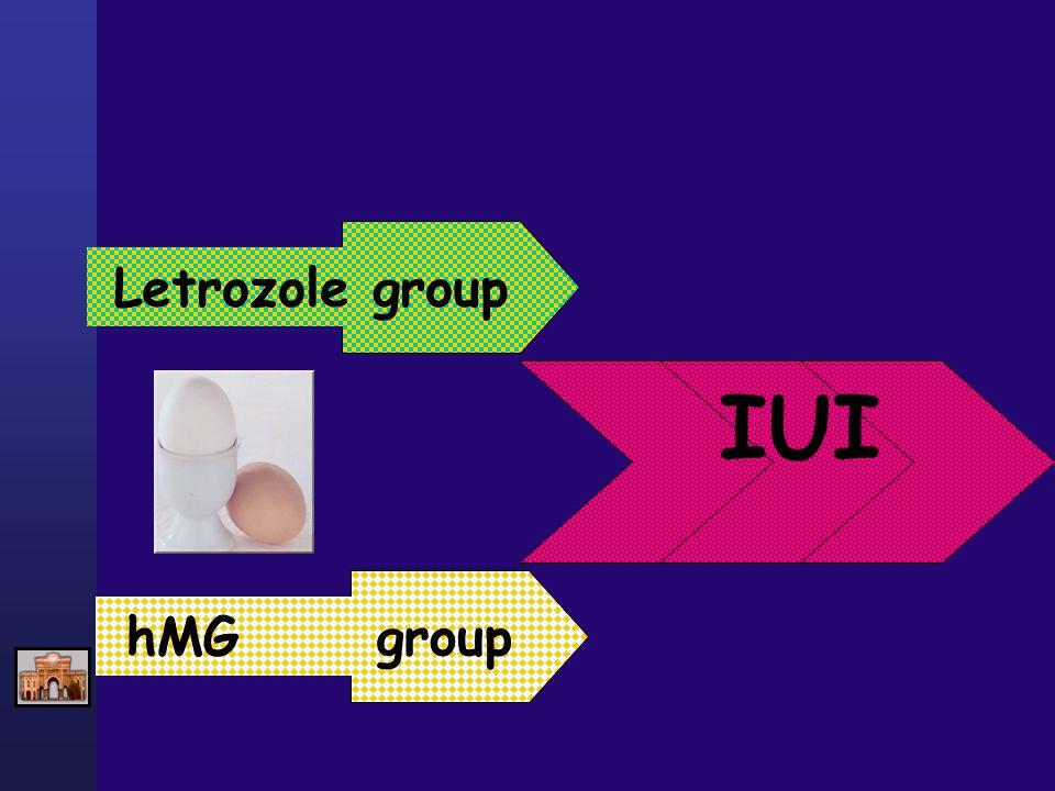 Letrozole grouphMG group IUI