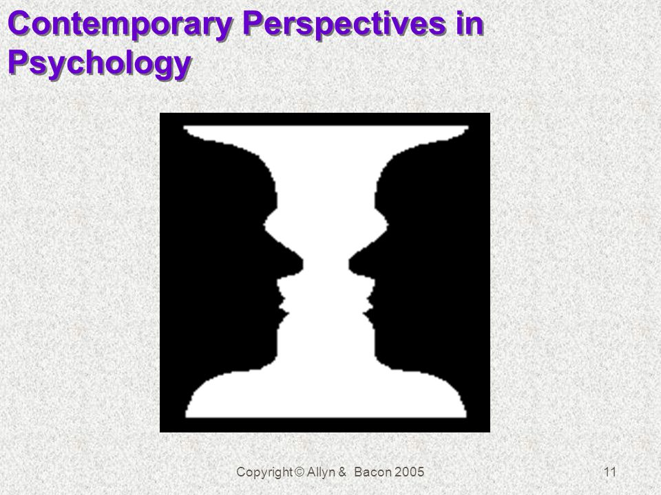 Copyright © Allyn & Bacon 200511 Contemporary Perspectives in Psychology