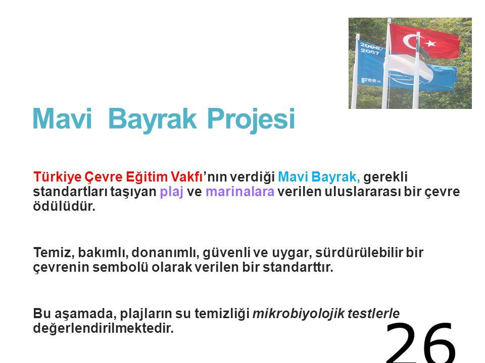 Mavi Bayrak Projesi Türkiye Çevre Eğitim Vakfı'nın verdiği Mavi Bayrak, gerekli standartları taşıyan plaj ve marinalara verilen uluslararası bir çevre