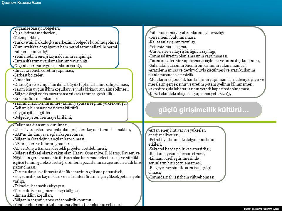 29 Ç UKUROVA K ALKINMA A JANSI Organize Sanayi Bölgeleri, İş geliştirme merkezleri, Teknoparklar, Türkiye'nin ilk kuluçka merkezinin bölgede kurulmuş