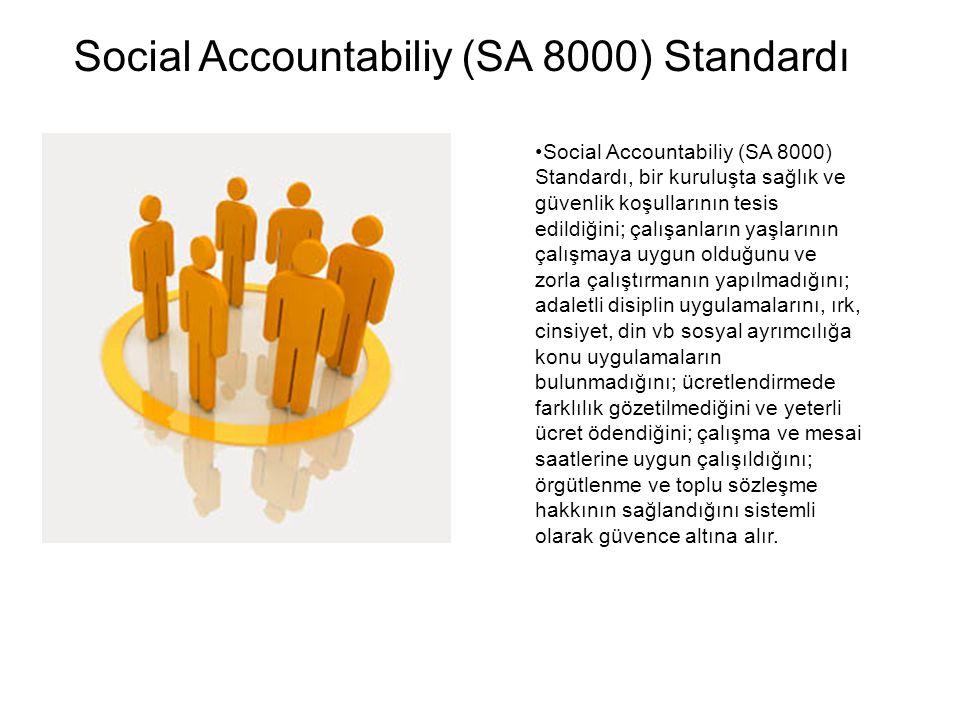 Social Accountabiliy (SA 8000) Standardı, bir kuruluşta sağlık ve güvenlik koşullarının tesis edildiğini; çalışanların yaşlarının çalışmaya uygun olduğunu ve zorla çalıştırmanın yapılmadığını; adaletli disiplin uygulamalarını, ırk, cinsiyet, din vb sosyal ayrımcılığa konu uygulamaların bulunmadığını; ücretlendirmede farklılık gözetilmediğini ve yeterli ücret ödendiğini; çalışma ve mesai saatlerine uygun çalışıldığını; örgütlenme ve toplu sözleşme hakkının sağlandığını sistemli olarak güvence altına alır.