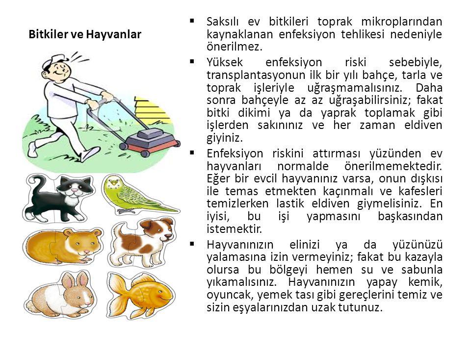 Bitkiler ve Hayvanlar  Saksılı ev bitkileri toprak mikroplarından kaynaklanan enfeksiyon tehlikesi nedeniyle önerilmez.  Yüksek enfeksiyon riski seb