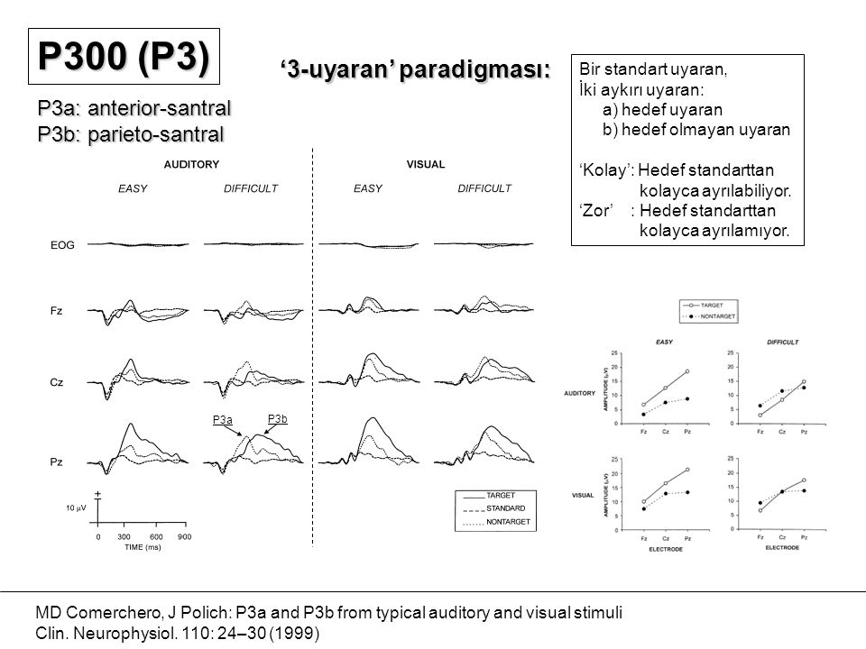 MD Comerchero, J Polich: P3a and P3b from typical auditory and visual stimuli Clin. Neurophysiol. 110: 24–30 (1999) '3-uyaran' paradigması: Bir standa