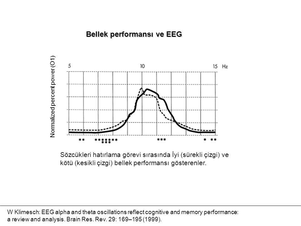 Sözcükleri hatırlama görevi sırasında İyi (sürekli çizgi) ve kötü (kesikli çizgi) bellek performansı gösterenler. Normalized percent power (O1) Bellek