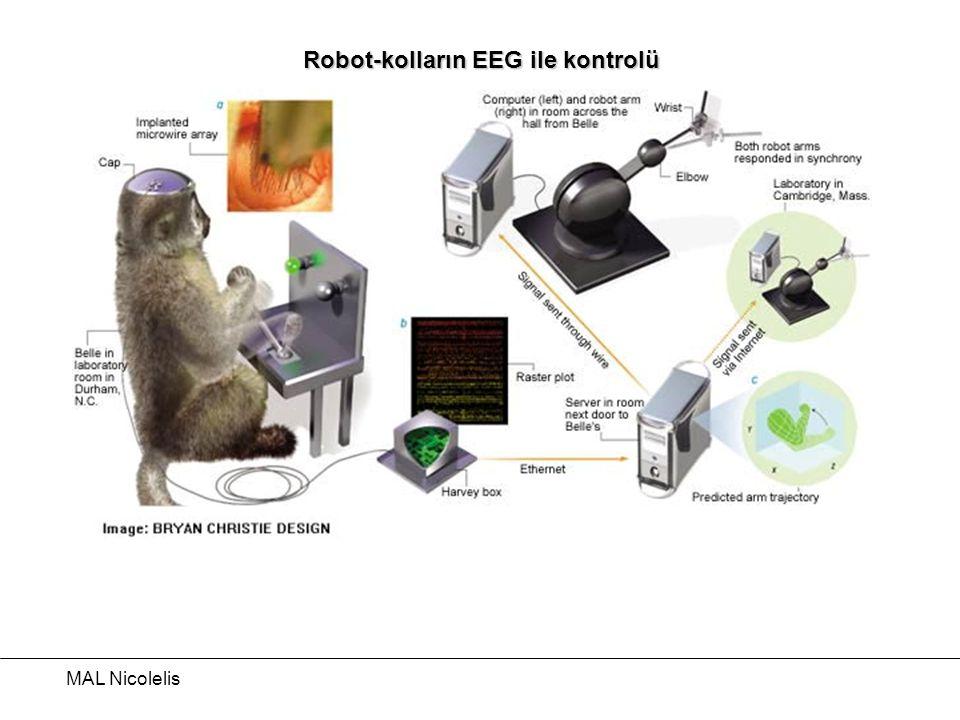 MAL Nicolelis Robot-kolların EEG ile kontrolü