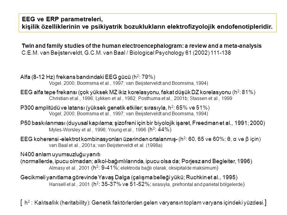 Alfa (8-12 Hz) frekans bandındaki EEG gücü Alfa (8-12 Hz) frekans bandındaki EEG gücü (h 2 : 79%) Vogel, 2000; Boomsma et al., 1997; van Beijsterveldt