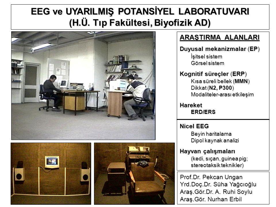 ARAŞTIRMA ALANLARI Duyusal mekanizmalar (EP) İşitsel sistem Görsel sistem Kognitif süreçler (ERP) Kısa süreli bellek (MMN) Dikkat (N2, P300) Modaliteler-arası etkileşim HareketERD/ERS Nicel EEG Beyin haritalama Dipol kaynak analizi Hayvan çalışmaları (kedi, sıçan, guinea pig; stereotaksik teknikler) Prof.Dr.