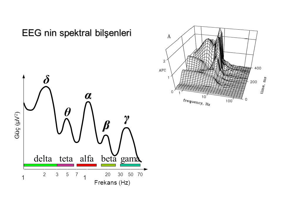 11 203050702357 Frekans (Hz) Güç (µV 2 ) alfabetagamatetadelta δ θ α β γ EEG nin spektral bilşenleri