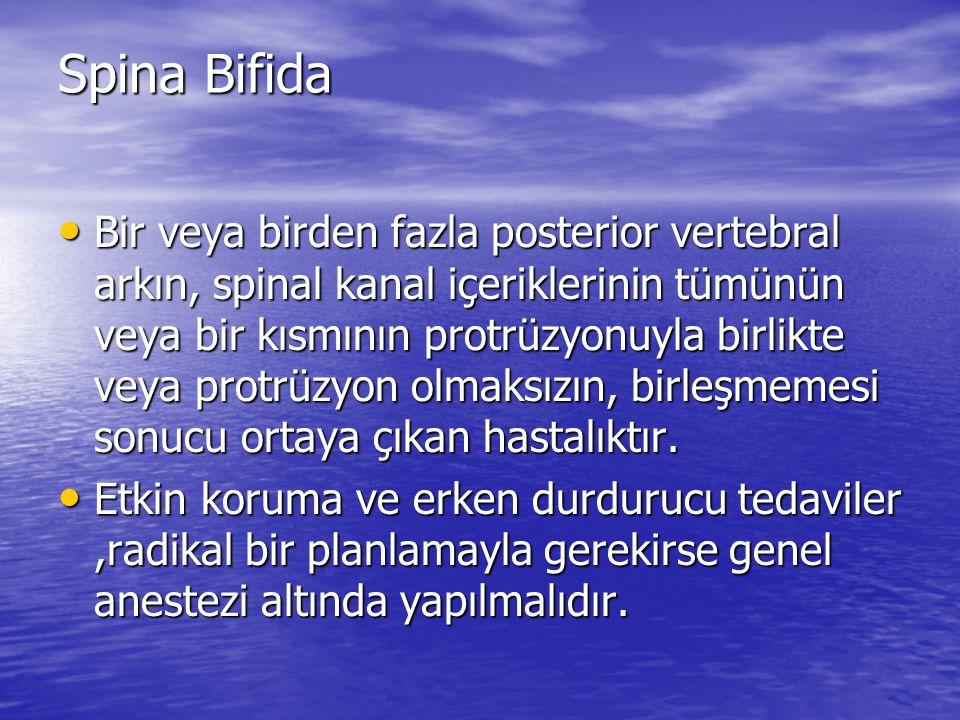 Spina Bifida Bir veya birden fazla posterior vertebral arkın, spinal kanal içeriklerinin tümünün veya bir kısmının protrüzyonuyla birlikte veya protrü