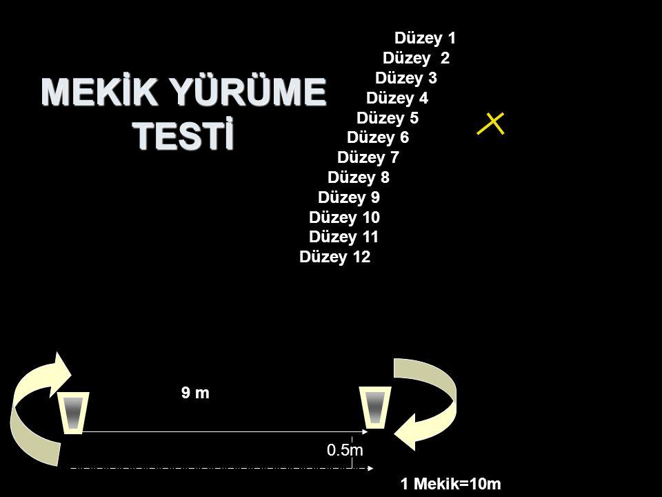 9 m MEKİK YÜRÜME TESTİ 1 Mekik=10m Düzey 1    Düzey 2     Düzey 3      Düzey 4       Düzey 5        Düzey 6         D
