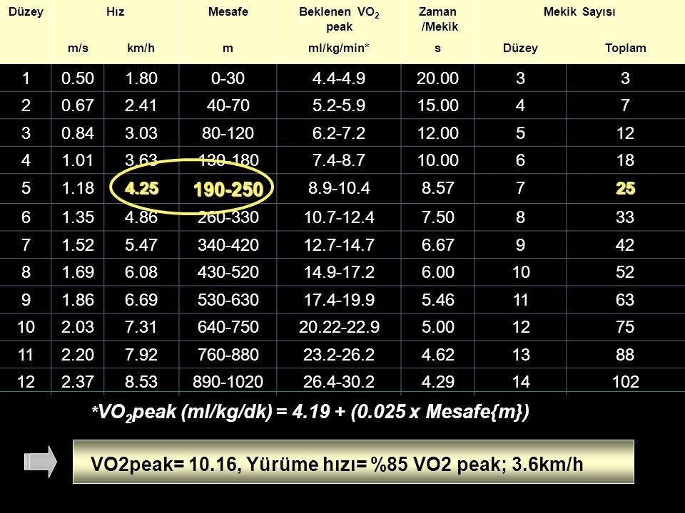 DüzeyHızMesafeBeklenen VO 2 peak Zaman /Mekik Mekik Sayısı m/skm/hmml/kg/min*sDüzeyToplam 10.501.800-304.4-4.920.0033 20.672.4140-705.2-5.915.0047 30.