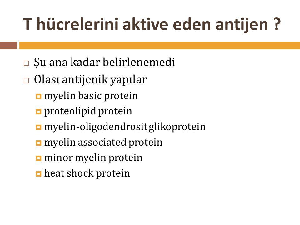 T hücrelerini aktive eden antijen ?  Şu ana kadar belirlenemedi  Olası antijenik yapılar  myelin basic protein  proteolipid protein  myelin-oligo