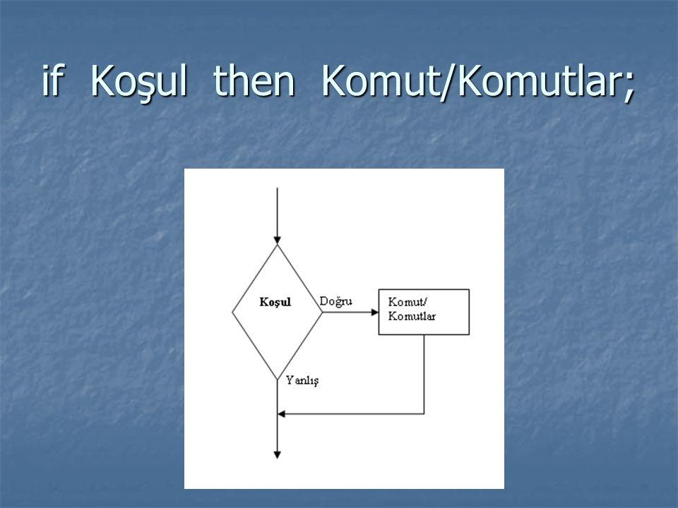 if Koşul then Komut/Komutlar;