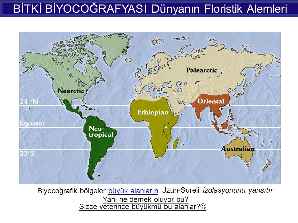 BİTKİ BİYOCOĞRAFYASI Dünyanın Floristik Alemleri Biyocoğrafik bölgeler büyük alanların Uzun-Süreli izolasyonunu yansıtır Sizce yeterince büyükmü bu al