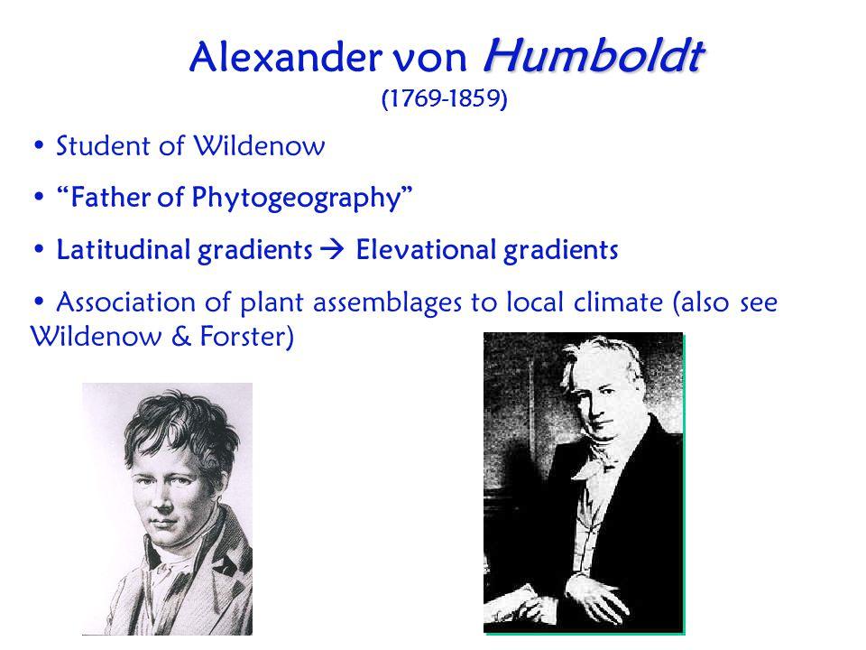 "Humboldt Alexander von Humboldt (1769-1859) Student of Wildenow ""Father of Phytogeography"" Latitudinal gradients  Elevational gradients Association o"