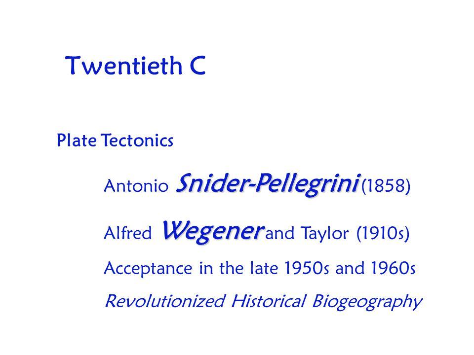 Twentieth C Plate Tectonics Snider-Pellegrini Antonio Snider-Pellegrini (1858) Wegener Alfred Wegener and Taylor (1910s) Acceptance in the late 1950s