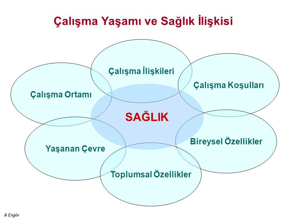 A Ergör Çalışma Yaşamı ve Sağlık İlişkisi Çalışma Ortamı Çalışma İlişkileri Çalışma Koşulları Yaşanan Çevre Bireysel Özellikler Toplumsal Özellikler S