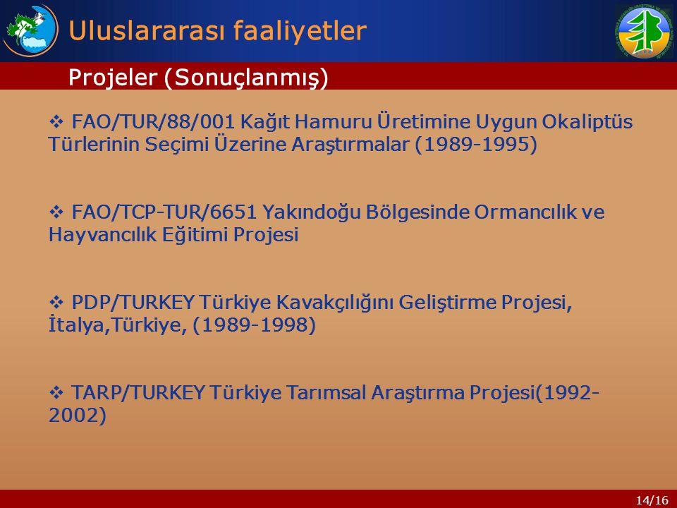 14/16 Uluslararası faaliyetler  FAO/TUR/88/001 Kağıt Hamuru Üretimine Uygun Okaliptüs Türlerinin Seçimi Üzerine Araştırmalar (1989-1995)  FAO/TCP-TUR/6651 Yakındoğu Bölgesinde Ormancılık ve Hayvancılık Eğitimi Projesi  PDP/TURKEY Türkiye Kavakçılığını Geliştirme Projesi, İtalya,Türkiye, (1989-1998)  TARP/TURKEY Türkiye Tarımsal Araştırma Projesi(1992- 2002) Projeler (Sonuçlanmış)
