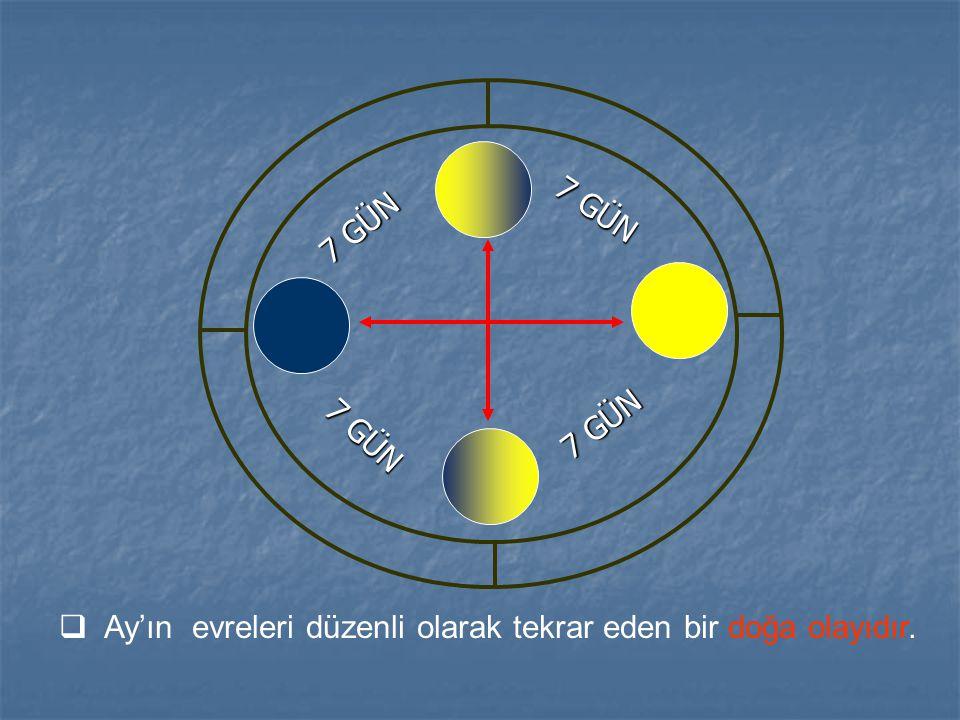 7 GÜN  Ay'ın evreleri düzenli olarak tekrar eden bir doğa olayıdır.