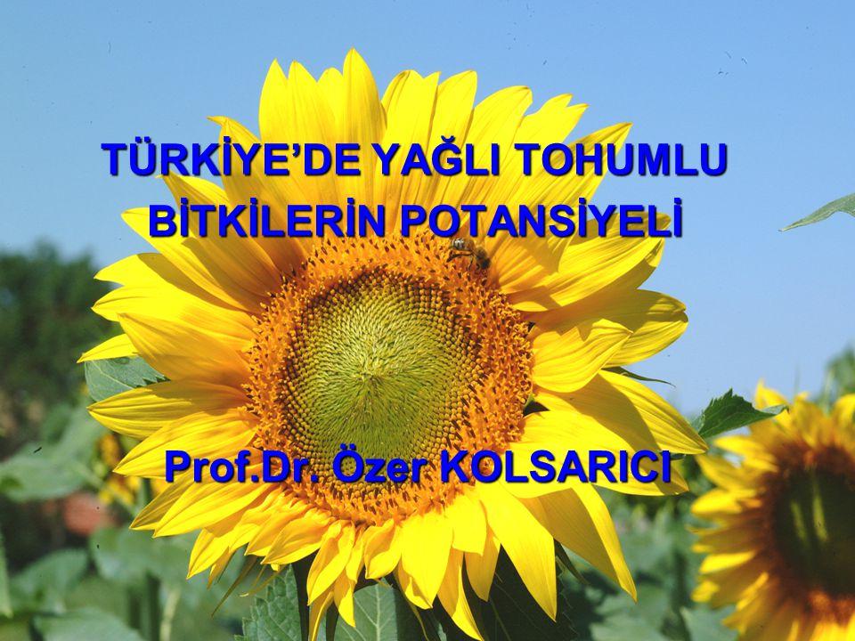 TÜRKİYE'DE YAĞLI TOHUMLU BİTKİLERİN POTANSİYELİ Prof.Dr. Özer KOLSARICI